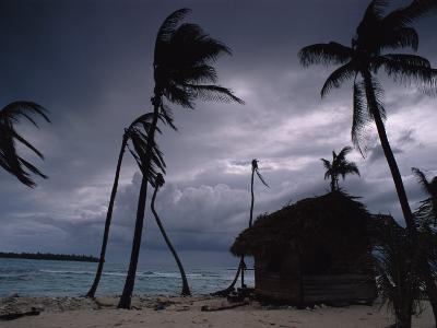 A Storm Ravages the Palm Trees and Huts on Glovers Reef-Bill Hatcher-Photographic Print