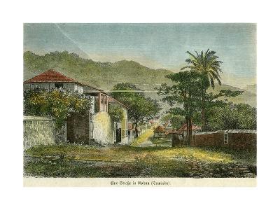 A Street in Roseau, Dominica, C1880- Pann-Giclee Print