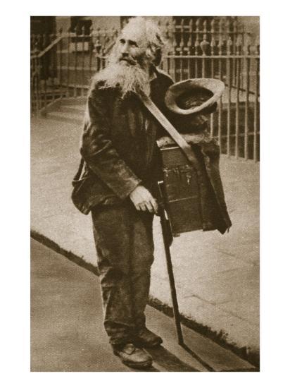 A Street Musician--Giclee Print