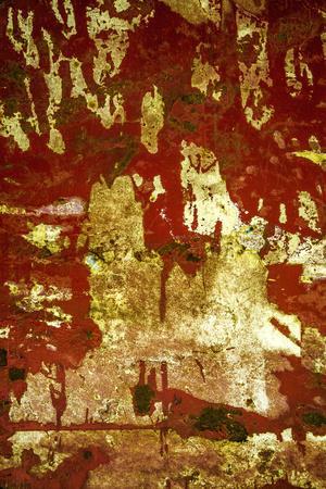 https://imgc.artprintimages.com/img/print/a-study-in-red-and-gold_u-l-q13d0040.jpg?p=0