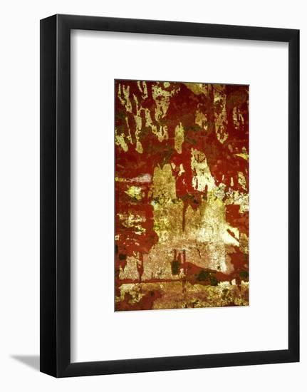 A Study in Red and Gold-Art Wolfe-Framed Photographic Print