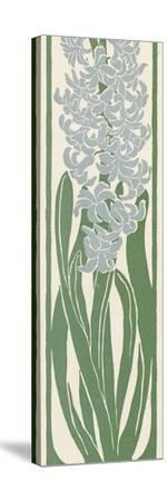 A Stylized, Art Nouveau Depiction of a Hyacinth Within a Rectangular Border