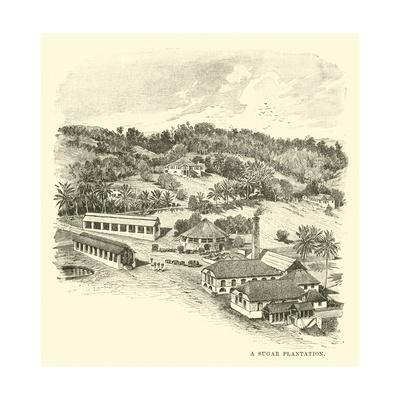 https://imgc.artprintimages.com/img/print/a-sugar-plantation_u-l-ppcmt30.jpg?p=0