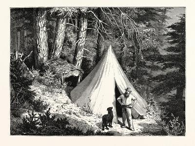 A Summer Encampment in a North Pacific Forest: Copper Mountain--Giclee Print