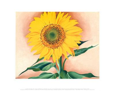 https://imgc.artprintimages.com/img/print/a-sunflower-from-maggie-1937_u-l-enpwa0.jpg?p=0