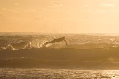 A Surfer Dives over a Wave on Praia Da Joaquina Beach on Florianopolis Island-Alex Saberi-Photographic Print