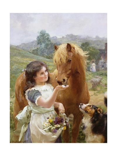A Sweet Tooth-Alfred William Strutt-Giclee Print