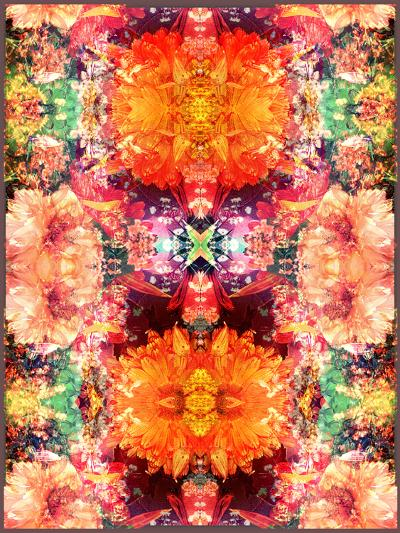 A Symmetric Colorful Ornament from Flowers, Photographic Layer Work-Alaya Gadeh-Photographic Print