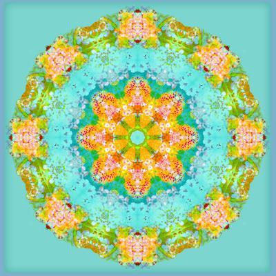 https://imgc.artprintimages.com/img/print/a-symmetric-floral-montage_u-l-q11z9iz0.jpg?p=0