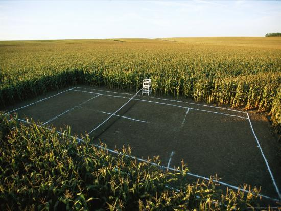 A Tennis Court Carved from a Cornfield-Joel Sartore-Photographic Print
