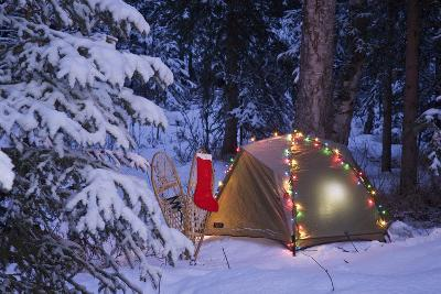 A Tent Is Set Up in the Woods with Christmas Lights and Stocking Near Anchorage, Alaska-Design Pics Inc-Photographic Print