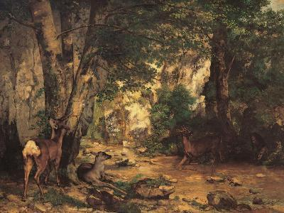 A Thicket of Roe Deer at the Stream of Plaisir Fontaine-Gustave Courbet-Giclee Print