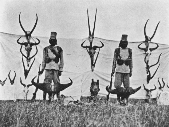 A Three Weeks' Shoot on the Guaso Nyiro, from 'Big Game Shooting on the Equator', 1908-Francis Arthur Dickinson-Giclee Print
