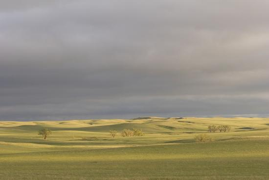 A Thunderstorm Above Oglala National Grassland in Nebraska-Phil Schermeister-Photographic Print