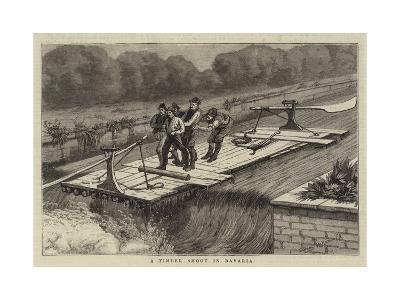 A Timber Shoot at Bavaria--Giclee Print