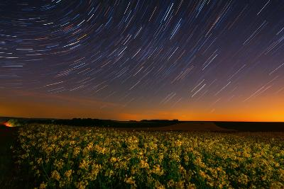 A Time Exposure Image over a Rape Field-Babak Tafreshi-Photographic Print