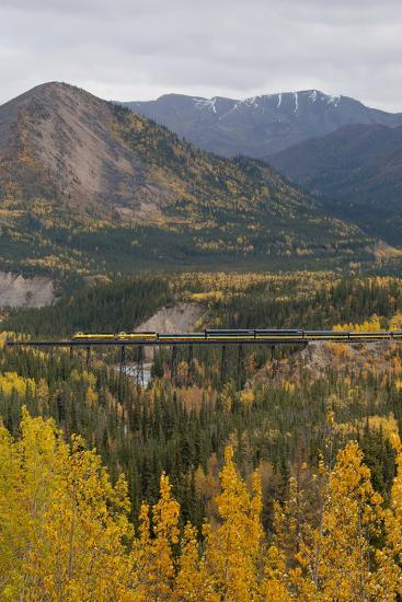 A Train Travels across a Bridge in the Fall in Alaska-Barrett Hedges-Photographic Print