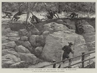 A Traveller Stoned by Monkeys in the Himalayas--Giclee Print
