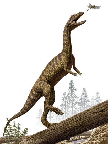 A Triassic reptile, Effigia okeeffeae, resembling a dinosaur-Raul Martin-Photographic Print