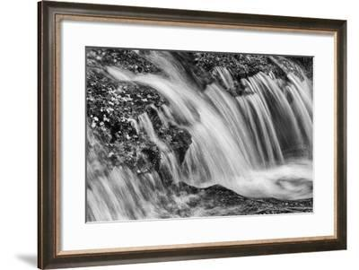 A Tributary of the Main Peel River, Renowned for its Clean Water and Pristine Landscapes-Peter Mather-Framed Photographic Print