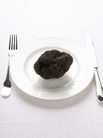 A Truffle on a White Plate--Photographic Print