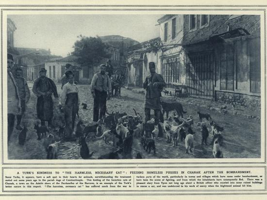 A Turk's Kindness to the Harmless--Photographic Print