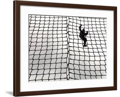 A US Army Soldier-In-Training Makes Her Way Down the Rope Ladder at Victory Tower-Stocktrek Images-Framed Photographic Print