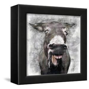 Donkey by A.V. Art