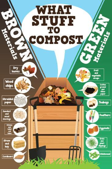 A Vector Illustration of What Stuff to Compost Infographic-Artisticco LLC-Art Print