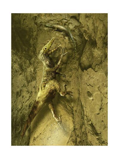 A Velociraptor Attempts to Catch a Lizard as its Next Prey-Stocktrek Images-Art Print