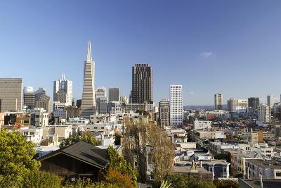 A View from Telegraph Hill, San Francisco, California, USA-Susan Pease-Photographic Print