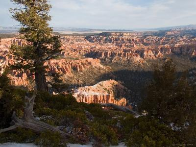 A View into the Hoodoos and Rock Formations of the Park at Sunrise, Bryce Canyon, Utah-Taylor S^ Kennedy-Photographic Print