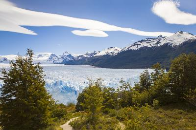A View Looking Through the Trees of the Top of the Perito Moreno Glacier in Argentina-Mike Theiss-Photographic Print
