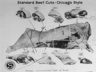 A View of a Meat Poster Showing Different Parts of a Cow from a Story Concerning Army Rations--Photographic Print