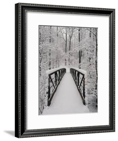 A View of a Snow-Covered Bridge in the Woods-Richard Nowitz-Framed Photographic Print