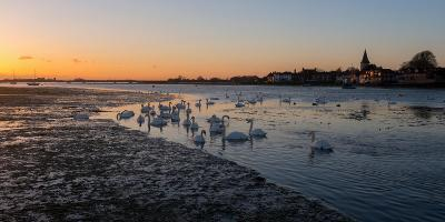 A View of Bosham Harbour in West Sussex-Chris Button-Photographic Print
