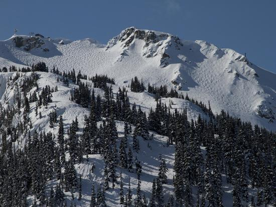 A View of Snow-Blanketed Whistler Peak Forested with Evergreen Trees-Tim Laman-Photographic Print