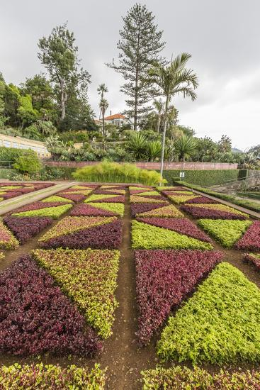 A View of the Botanical Gardens-Michael Nolan-Photographic Print