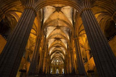 A View of the Columns and Vaulted Ceiling of the Catedral De Barcelona-Michael Melford-Photographic Print