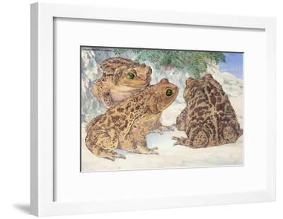 A View of the Patterned Cuban Toads-Hashime Murayama-Framed Giclee Print