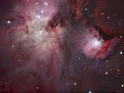 A View of the Trapezium Region, Which Lies in the Heart of the Orion Nebula-Stocktrek Images-Photographic Print
