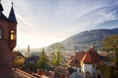 A View over the Misty Old Town of Heidelberg, Baden-Wurttemberg, Germany-Andreas Brandl-Photographic Print