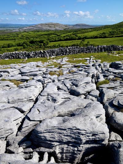 A View Towards Mullaghmore in the Burren, County Clare, Ireland-Chris Hill-Photographic Print