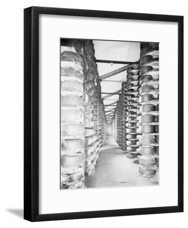 Cheese Warehouses of Monte Di Bologna
