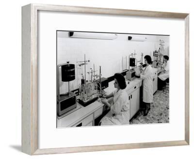 Interior of Medical-Pharmaceutical Laboratory