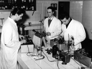 Technicians Working in a Chemical Laboratory at the Aldini Valeriani Institute by A. Villani