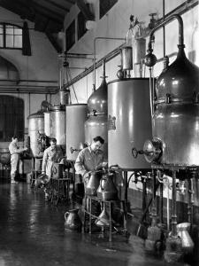 Workers Busy in a Distillery by A. Villani
