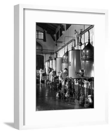 Workers Busy in a Distillery