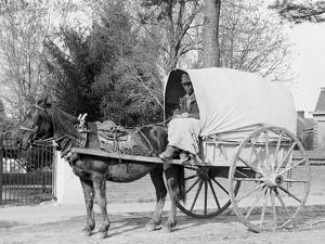 A Virginia Vegetable Cart