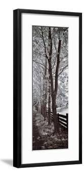 A Walk To Remember II-Ily Szilagyi-Framed Giclee Print